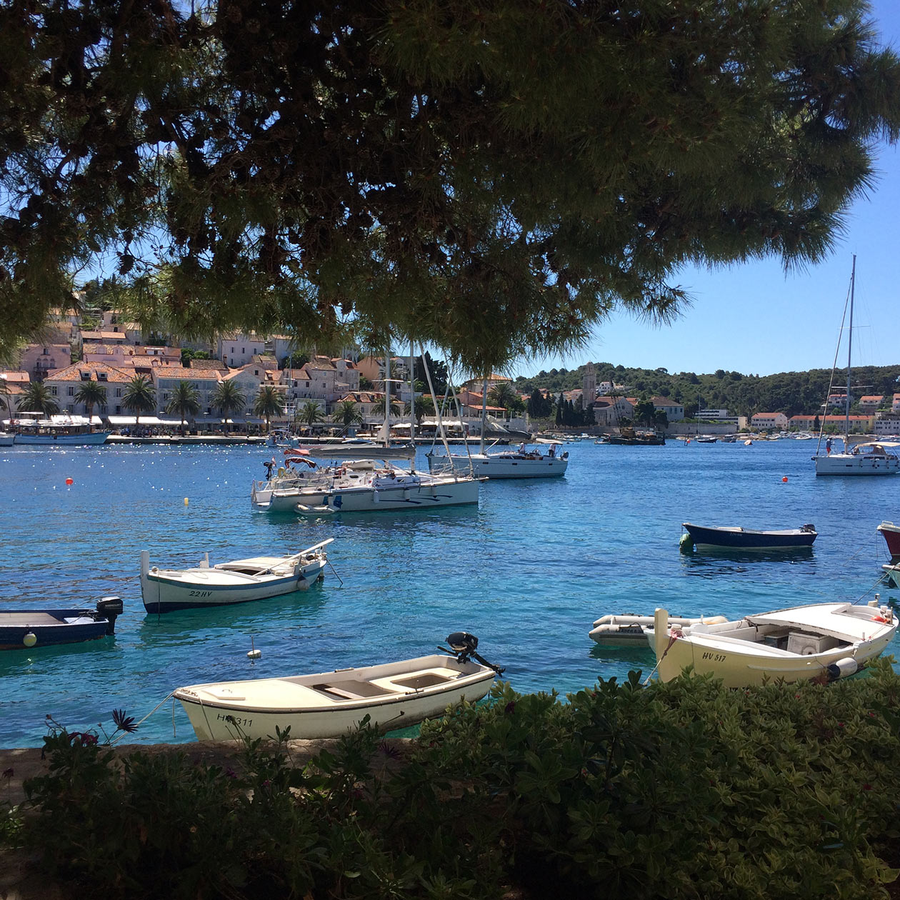 hvar city bay port sailing boat yacht island sea ocean croatia travel